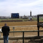 View from the rail at Pimlico
