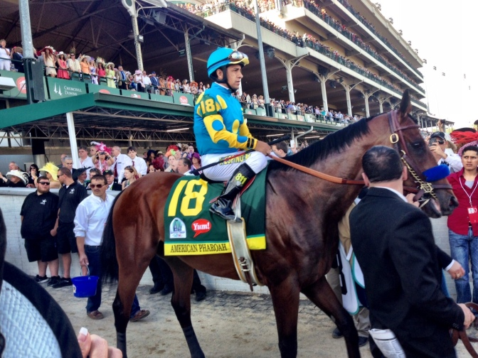 UPDATED: 'Pharoah' Breeding Rights Sold, will stand at Ashford
