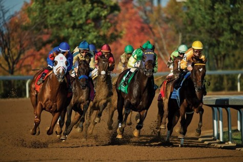 Keeneland's 2015 Fall Meet begins Oct. 2 (Keeneland photo)